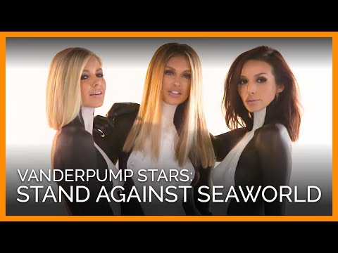 'Vanderpump Rules' Beauties Unite Against SeaWorld's Orca Captivity