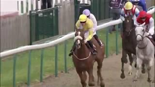 Vidéo de la course PMU QATAR GRAND HANDICAP DES MILERS - PRIX KHELEYF