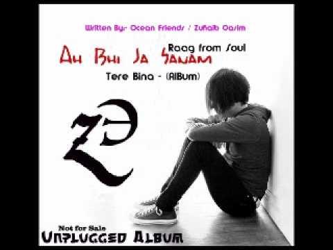 Ah Bhi Ja Tu Ae Sanam - Tere Bina [Unplugged]