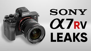 Sony a7RV Rumors | Sony a7R V Leaks and Expectations | Sony a7RV Release Date screenshot 2