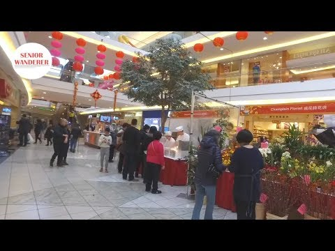 Vancouver street walk, EP 40 - Chinese New Year Flower & Gift Fair, Aberdeen Centre