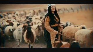 موليا نيران قلبي سعرت - معد الحسان ويوسف حسين الحسن
