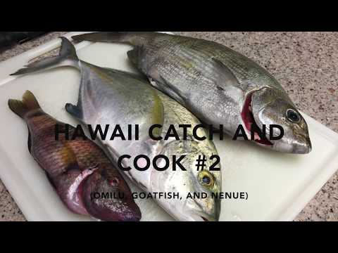 Hawaii Catch, Clean, and Cook #2 (Goatfish, Nenue, and Omilu)