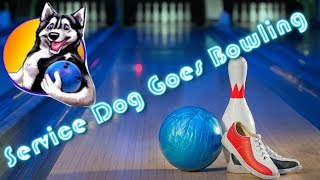 SERVICE DOG GOES BOWLING