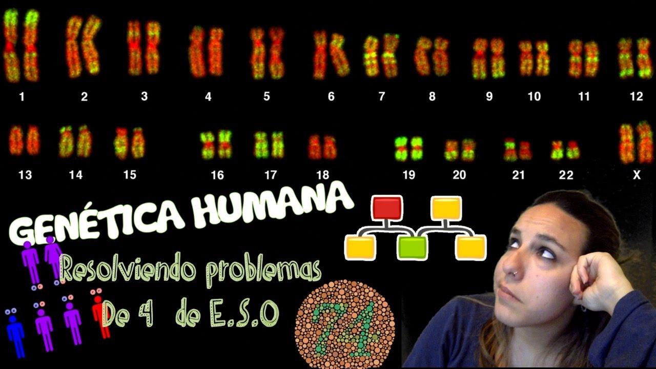 Genética Humana: Resolviendo problemas de 4º de E.S.O. - Bio[ESO]sfera