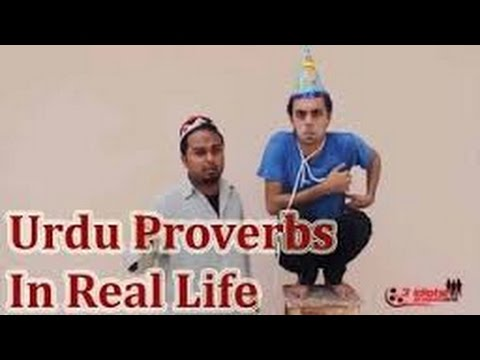 the idiots funny videos I Urdu Proverbs In Real Life I  The Idiotz