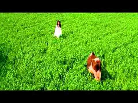 Tujhe Dekha To Ye Jaana Sanam DDLJ Song Full HD   YouTube