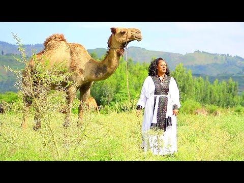 Meseret Belete - Erikum Zemeda | እሪኩም ዘመዳ - New Ethiopian Music (Official Video)
