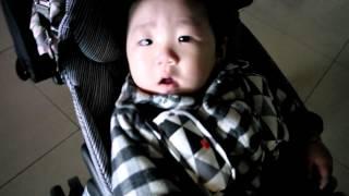 휴대용 유모차 지비 티바 탑승한 모어 :)