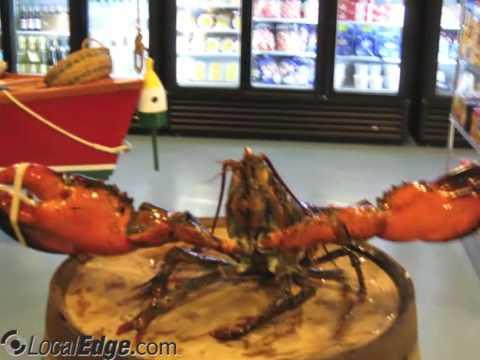 Free Range Fish & Lobster Manchester NH
