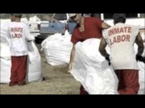 Prison Labor   Medium