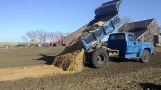 Ford F600 Dump Truck With Military Tires Hauling Sand To Garden