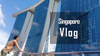깽깽이 여행 Vlog] 3박4일 싱가포르 자유 여행~!…