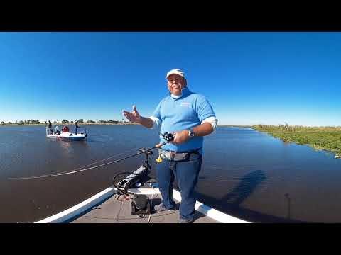 Pesca en 360: Tips de pesca de lobina negra y bagre