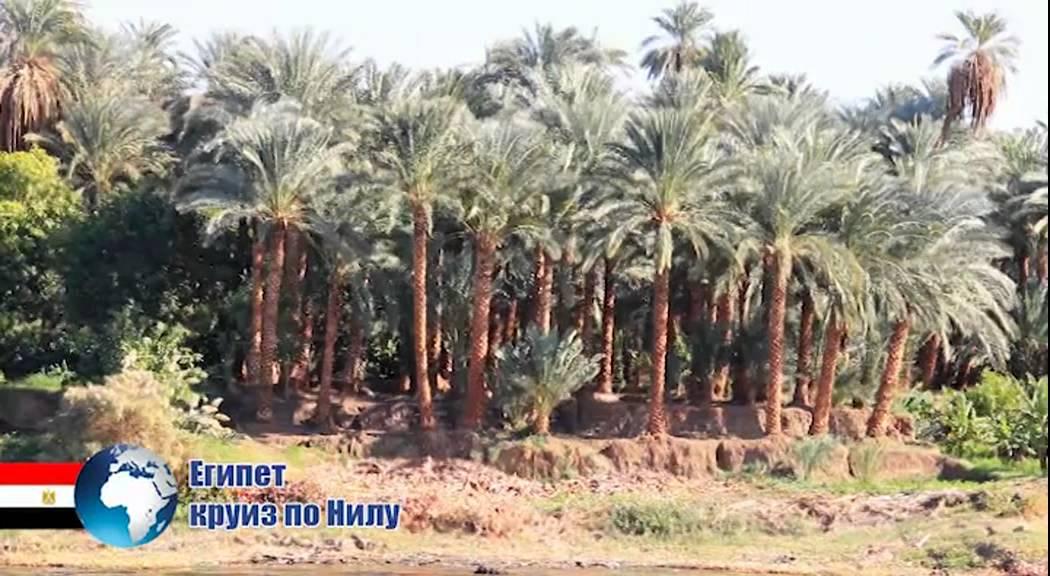Путешествие по Сокровищам Нила. Из Египта | интересные круизы и путешествия по россии