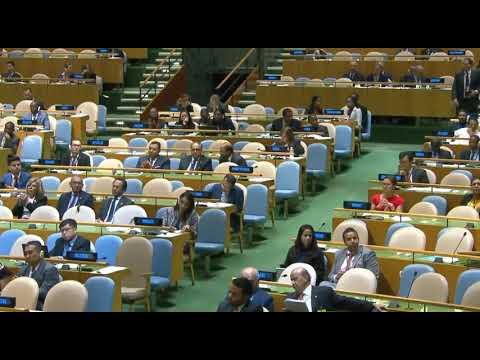 """נשיא מצרים בעצרת האו""""ם 2017: זה הזמן להסדר סופי ורחב לסכסוך הישראלי-פלסטיני ."""