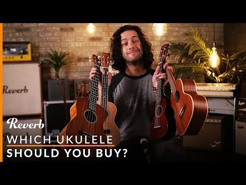 Which Ukulele Should You Buy? | Reverb Buying Guide
