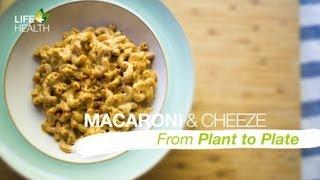 Macaroni & Cheeze