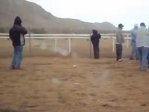 BESSIE: Carreras de caballos en hesperia california
