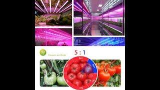 Посилка з Китаю розпакування № 89 Фитосветодиоды, світлодіоди для рослин, повний спектр світлодіодів.
