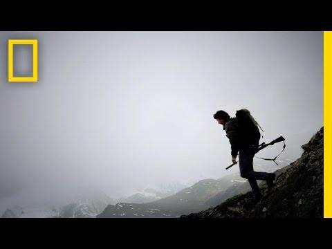 Sheep Scout | Life Below Zero