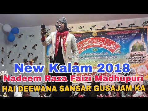 Nadeem Raza Faizi Madhupuri 2018    SuperHit New Naat Sharif 2018    HAI DEEWANA SANSAR GUSAJAM KA