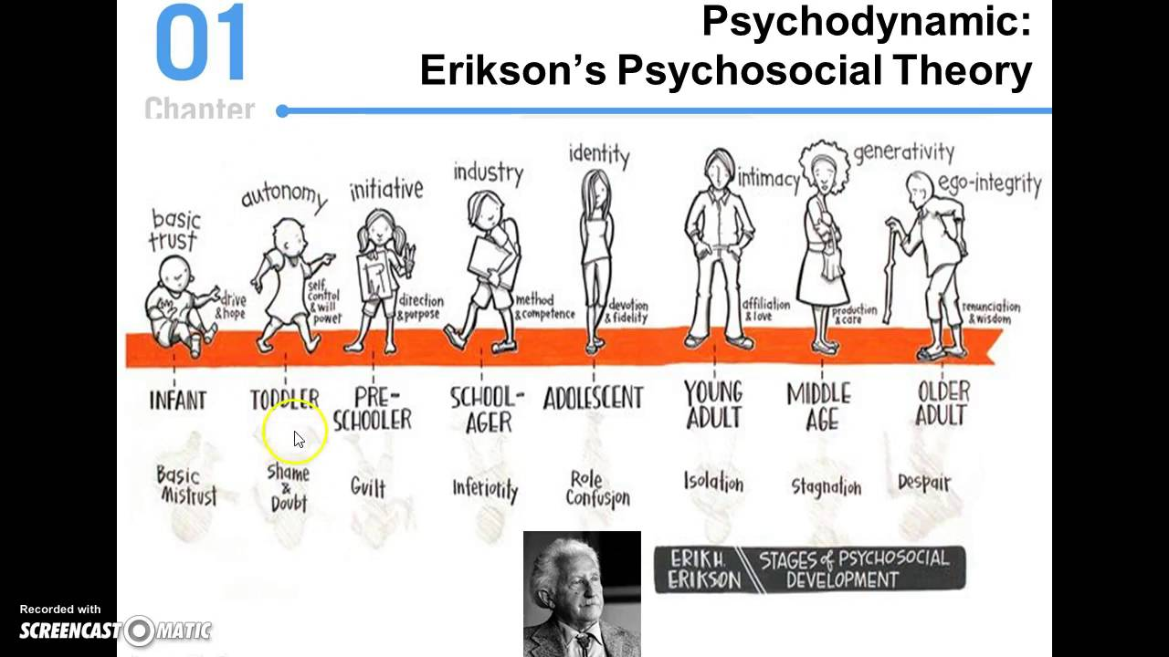 Essay/Term paper: Erikson's psychosocial theory of development: young adults