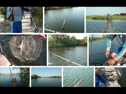 летняя рыбалка на карася - 2016-07-18 03:39:38