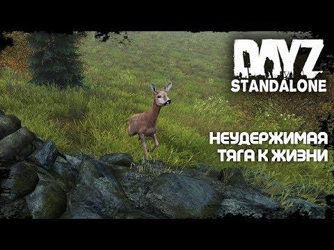 DayZ Standalone • Неудержимая тяга к жизни •
