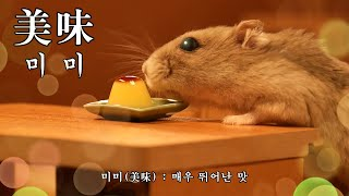 [ENG Sub] I made hamster the smallest pudding in the world