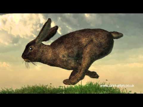 Dance With Spirits Part 3 - Spirit of Trance  - Ian Martyn & Friends