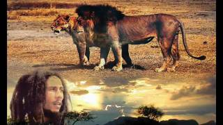 Bob Marley Natural Mystic.mp3