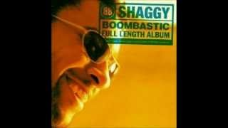 Shaggy - Forgive Them Father