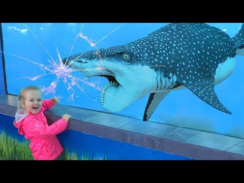 Funny Animal Videos - Dolphin and baby 2020 - Try not to laugh