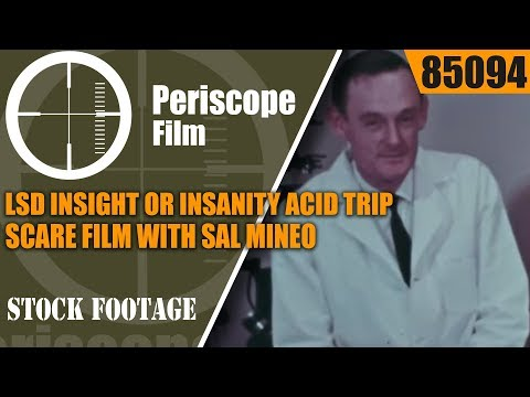 LSD INSIGHT OR INSANITY ACID TRIP SCARE FILM WITH SAL MINEO 85094