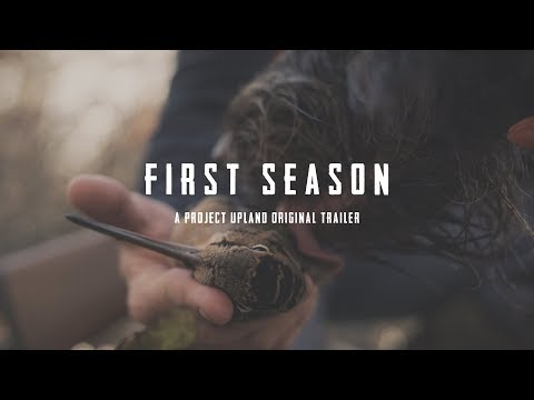 Training Your First Bird Dog - First Season Trailer