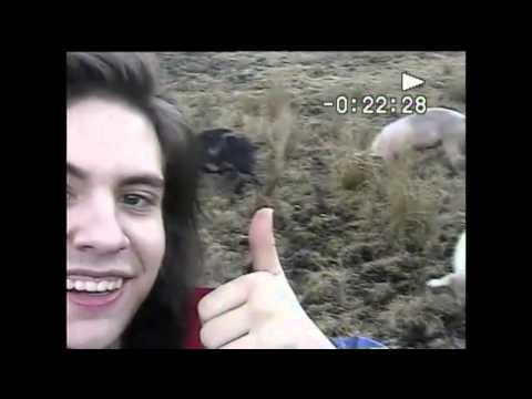 The Britanys- City Boys (Home Video)