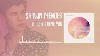 Shawn Mendes - If I Can't Have You (Audio)