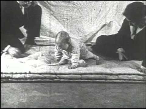 The Little Albert Experiment - Psychologized