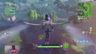 Fortnite battle royale getting dubs with pathetic and srg