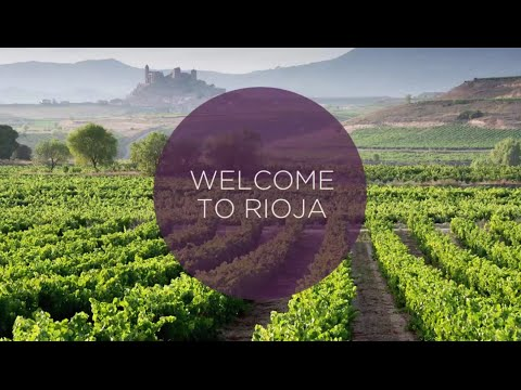 Ultimate Video Guide to the Rioja Wine Region