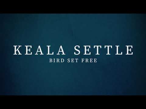 Keala Settle - Bird Set Free (Sia Cover)