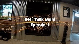 In Wall Reef Build: Episode 1