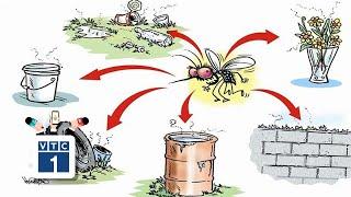 Đồng Tháp: Dịch bệnh sốt xuất huyết tăng vùn vụt