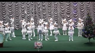 """Белые котята """"Гармония"""" 2014 Киев"""