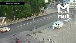 В Архангельске медведь зашел в центр города
