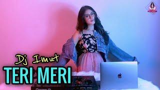 Download Lagu TERI MERI BIKIN BAPER  ( DJ IMUT REMIX ) mp3