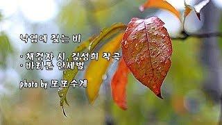 낙엽에 젖는 비/채경자 시, 김성희 작곡/바리톤 안세범 & photo by 모모수계