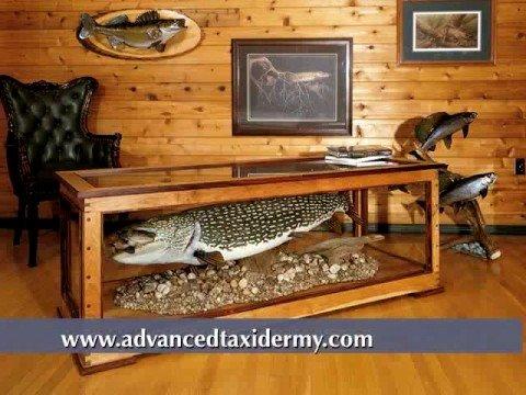 Fish mounted Fish Mounts Replicas Taxidermy Fish Mounts Replica