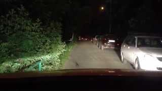 видео автолюстра светодиодная